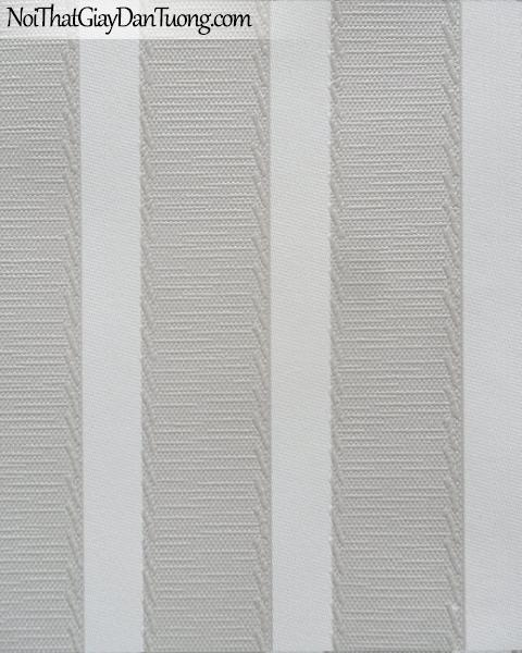 Giấy dán tường Colour Infinity 1831