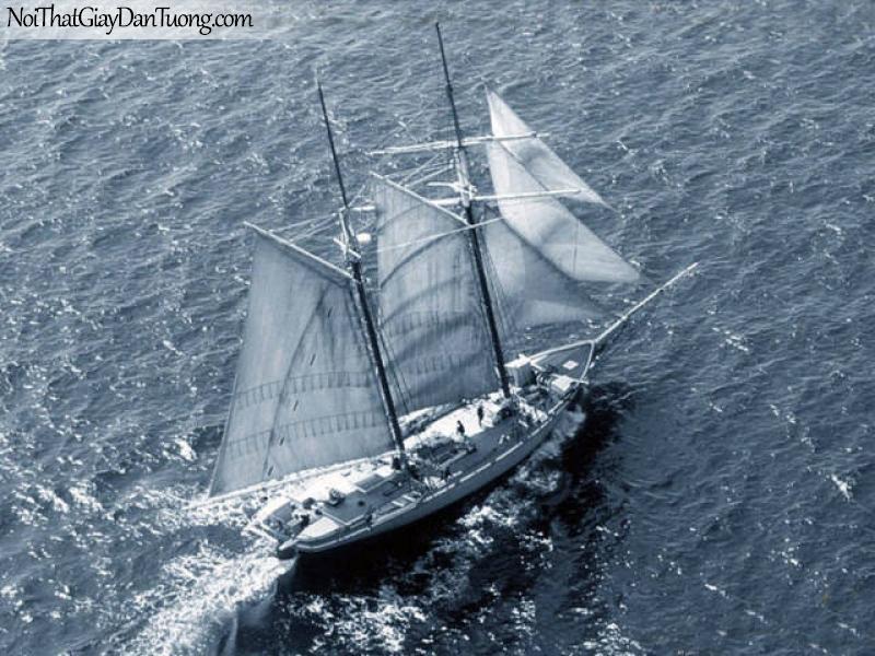 Tranh dán tường Thuyền và Biển DA139