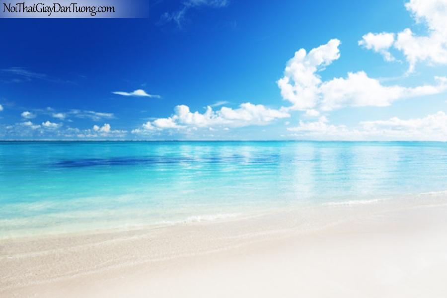 Tranh dán tường biển trong xanh