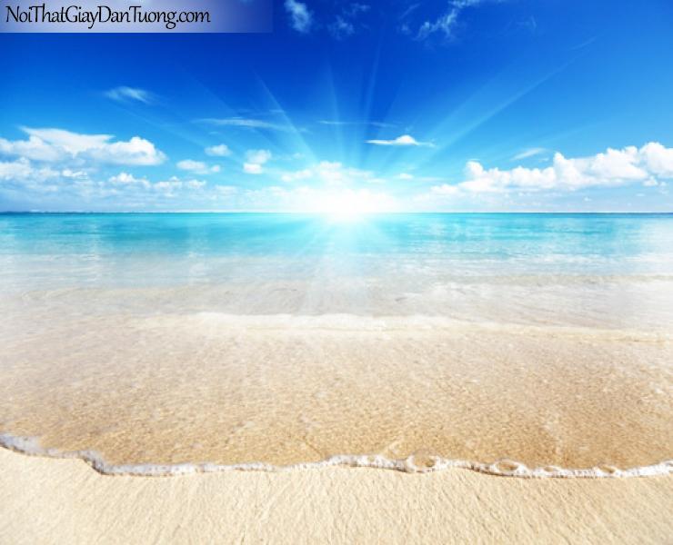 Tranh dán tường biển xanh dưới ánh bình minh