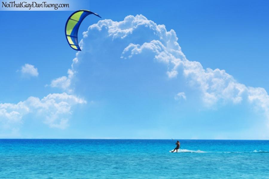 Tranh dán tường | lướt sóng trên biển xanh