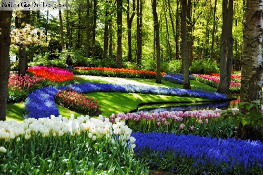Tranh dán tường | Vườn hoa đẹp dưới những tán cây lớn