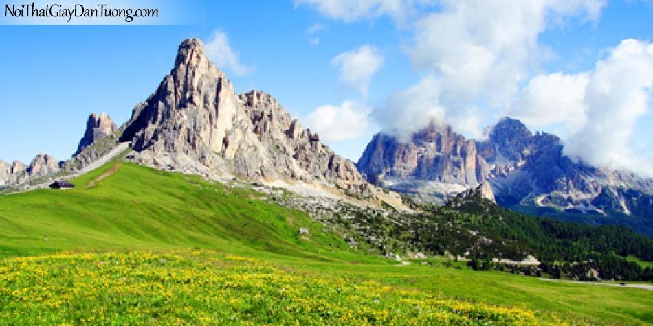 Tranh dán tường, núi đá mọc lên giữa đồng cỏ xanh ngát