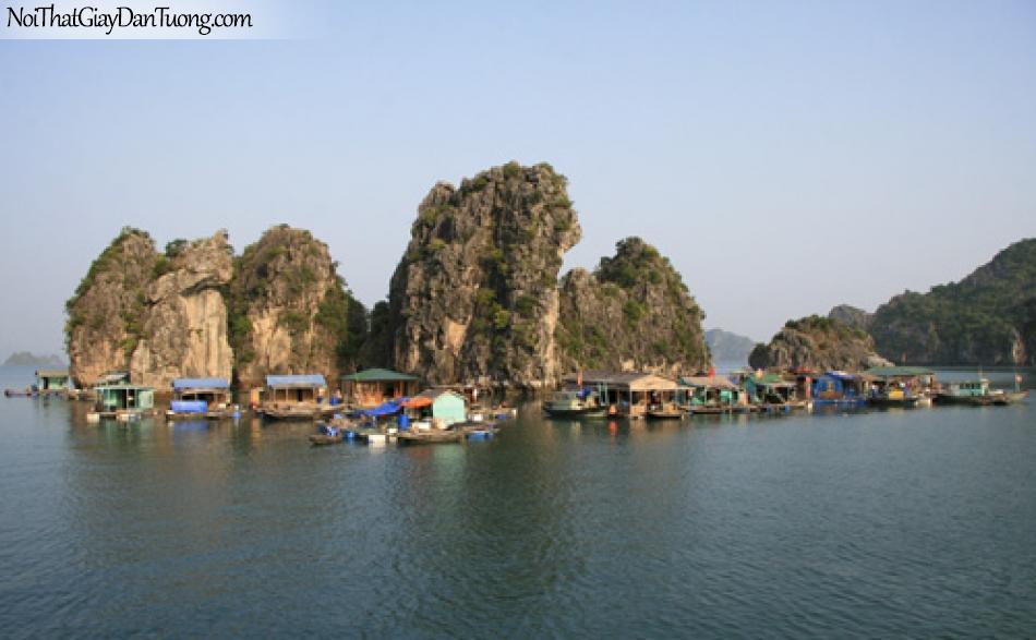 Tranh dán tường Vịnh Hạ Long, kỳ quan thế giới mới