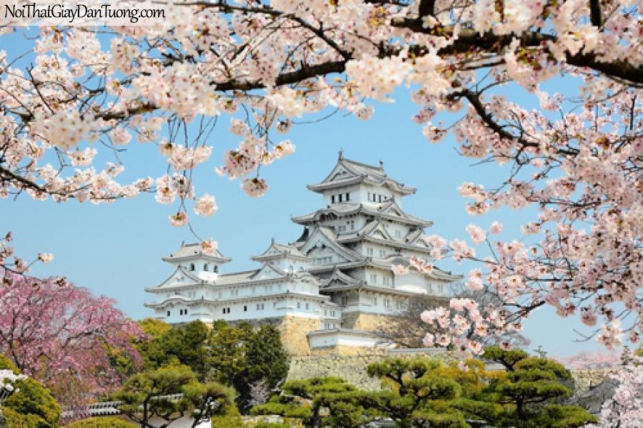 Cảnh đẹp Nhật Bản, Tranh dán tường Nhật Bản