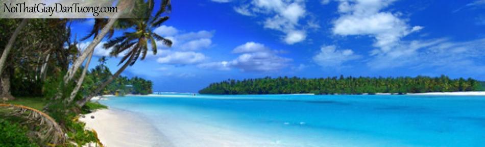 tranh dán tường, dừa và biển
