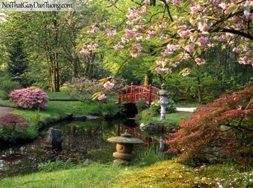 Tranh dán tường, cây cỏ, hoa lá trong vườn thời hiện đại