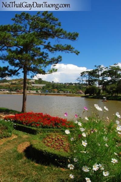 Tranh dán tường, có cây hoa lá bên bờ hồ