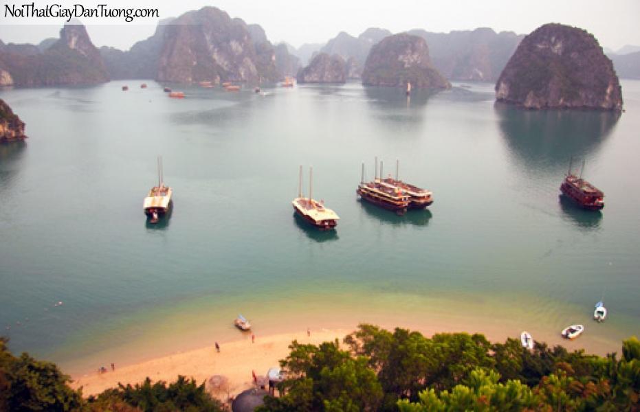 Tranh dán tường, phong cảnh du thuyền vịnh Hạ Long DA0090