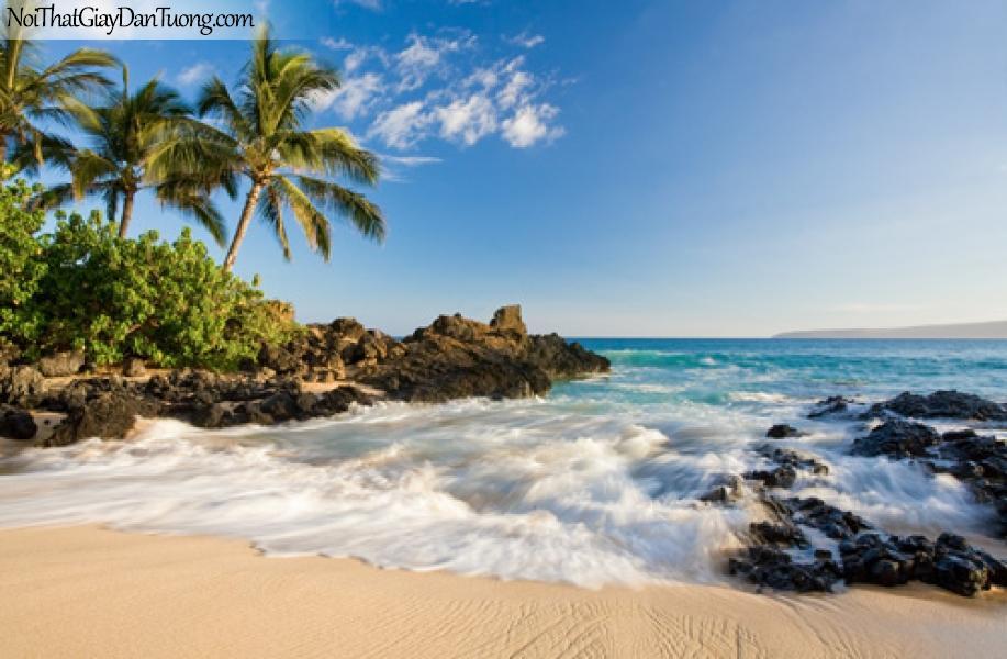 Tranh dán tường, biển vắng cát vàng, từng con sóng bạc đầu