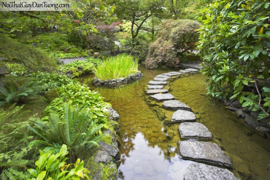 Tranh dán tường, phong cảnh vườn thủy sinh, lối đi bộ của thời hiện đại DA0100