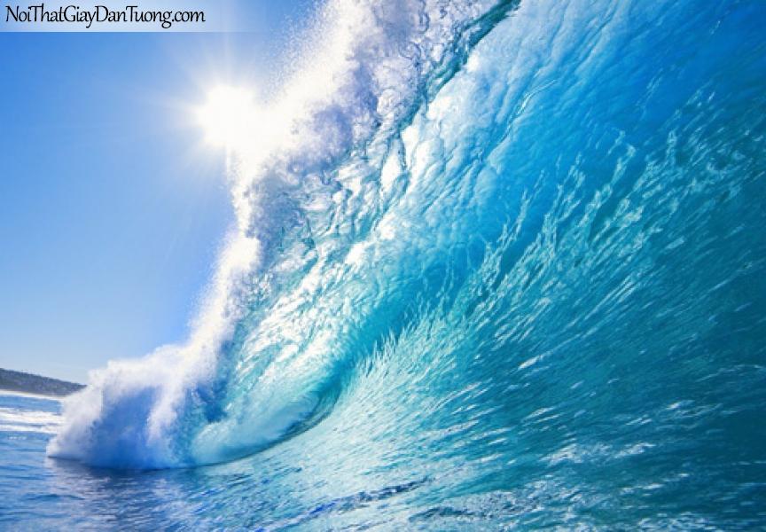Tranh dán tường sóng biển, biển nổi sóng bác đầu