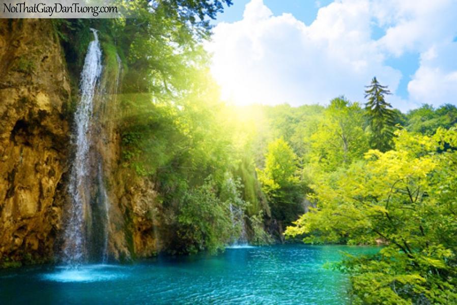 Tranh dán tường, thác nước trong rừng cây
