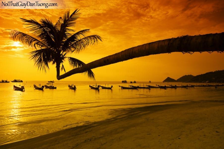 DA1045 - Tranh dán tường dừa vươn mình ra biển, tàu thuyền cập bến trong hoàng hôn