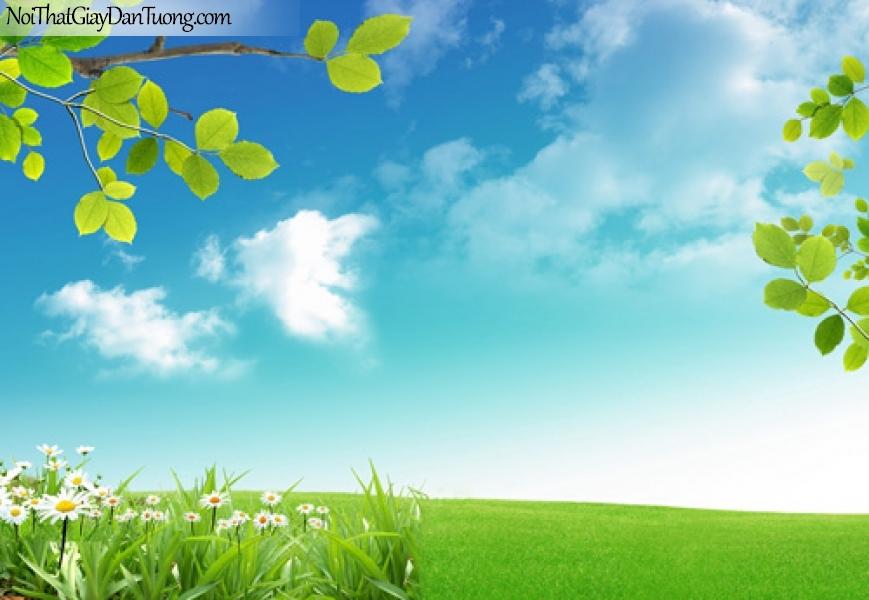 Tranh dán tường, bầu trời, thảo nguyên cỏ xanh DA0139