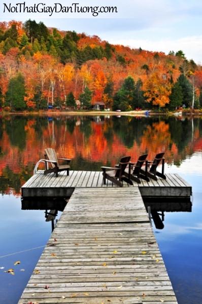 Tranh dán tường bến tàu bằng gỗ với ghế trên hồ mùa thu bình lạng DA0153