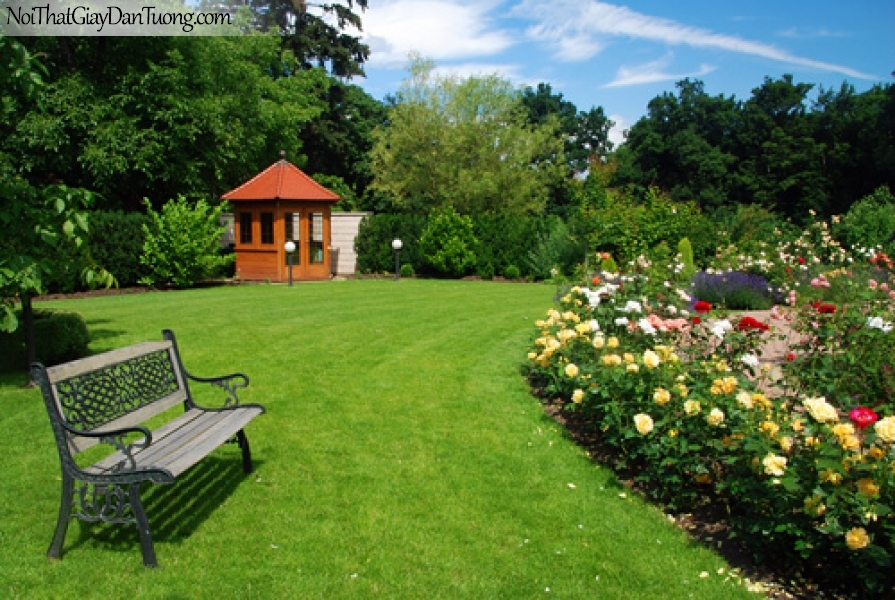 Tranh dán tường cỏ cây hoa lá trong vườn DA0151
