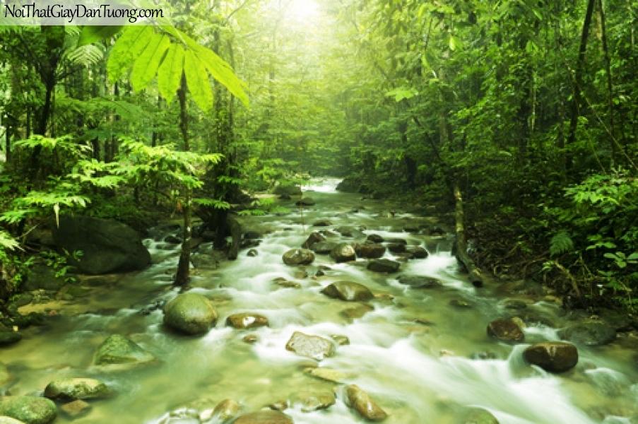 Tranh dán tường con suối trong rùng xanh DA0158