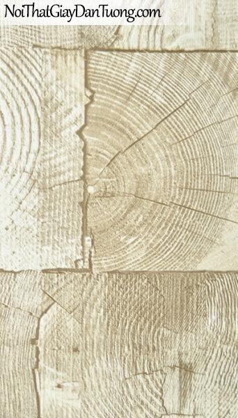 Giay dan tuong gia go - giấy dán tường giả gỗ 22028-1