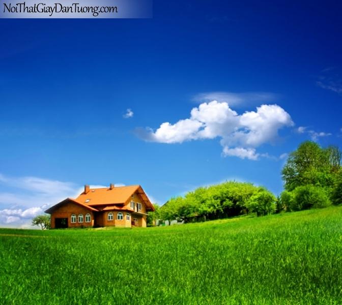 Tranh dán tường, bầu trời trong xanh và ngối nhà nhỏ DA0251