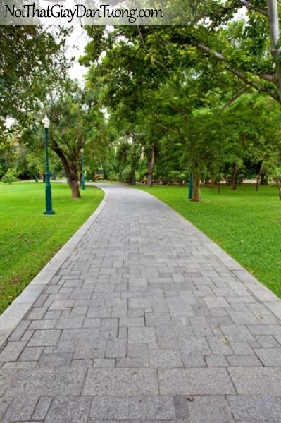 Tranh dán tường, công viên cây xanh DA0224