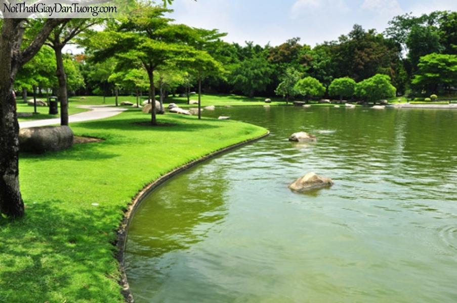 Tranh dán tường, hồ nước và cây xanh DA0226