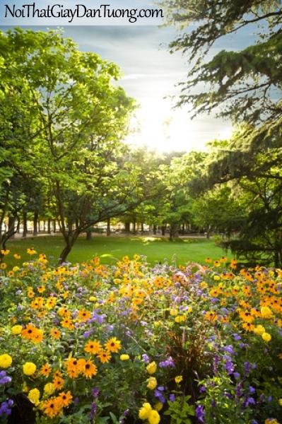 Tranh dán tường, cây xanh hoa vàng DA0271