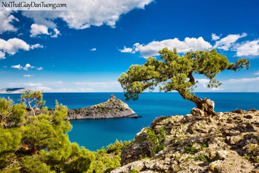 Tranh dán tường, những hòn đảo nhỏ với những chiếc cây giữa bẩu trời xanh DA0289