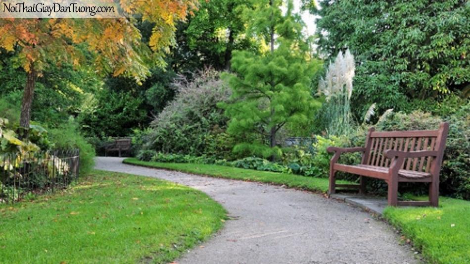 Tranh dán tường, con đường chạy giữa rừng cây xanh với những chiếc ghế DA0343