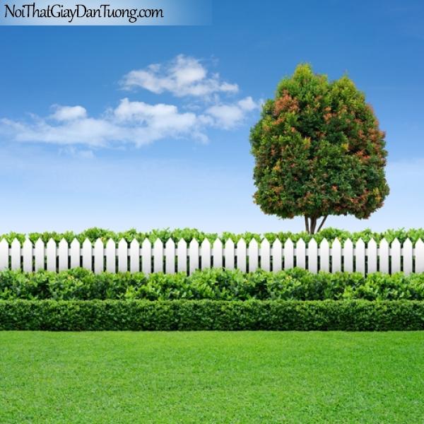 Tranh dán tường, hàng rào chắn với thảm cỏ dưới bầu trời xanh với cây cổ thụ DA0350