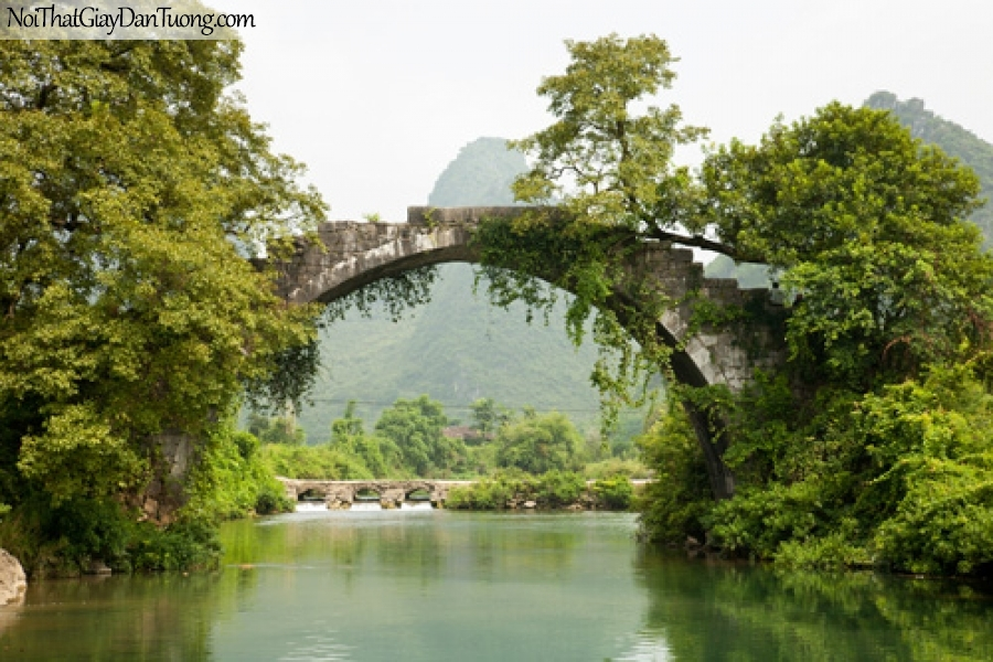 Tranh dán tường, nhưng cây cầu bắc qua dòng sông với nhiều cây xanh DA0340