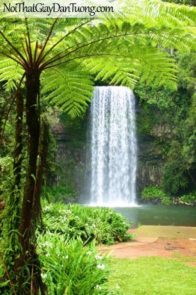 Tranh dán tường, rừng cây xanh bên thác nước DA3037