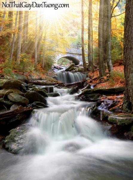 Tranh dán tường, thác nước chảy trong khu rừng mùa thu DA3034