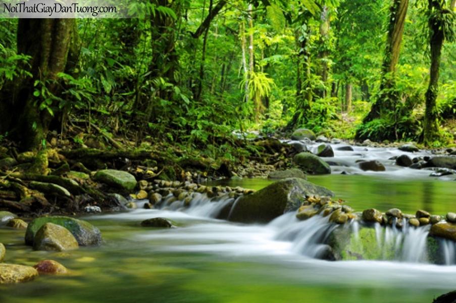 Tranh dán tường, thác nước thơ mộng chảy êm đềm giữa rừng cây cổ thụ xanh DA3039