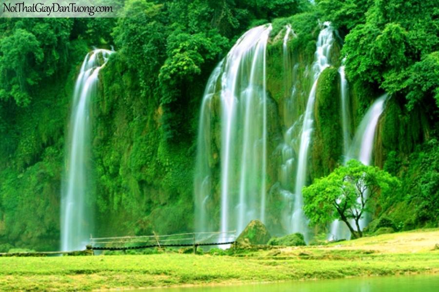 Tranh dán tường, thác nước chảy chảy giữa rừng cây xanh với thảm cỏ vàng DA3056