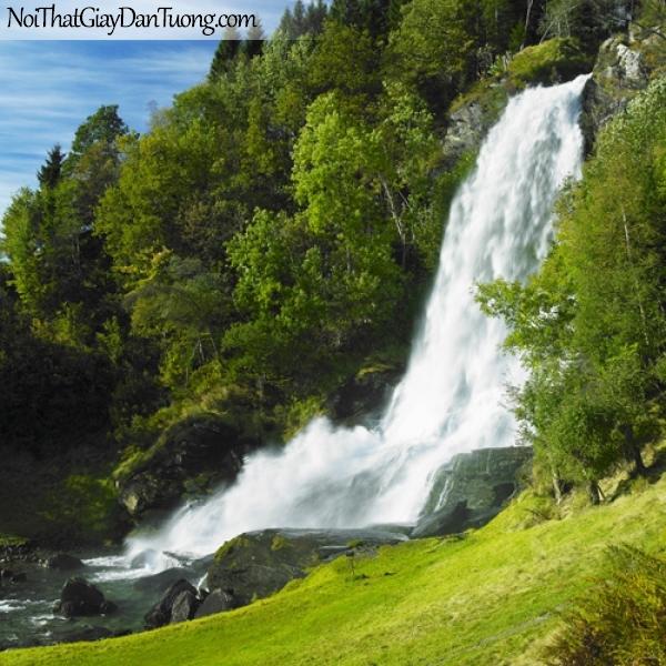 Tranh dán tường, thác nước hùng vĩ chảy giữa rừng cây xanh DA3059