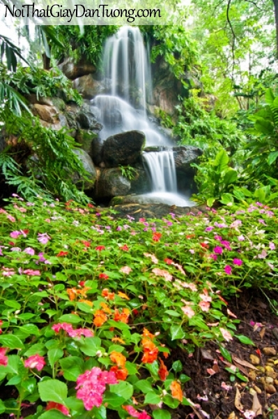 Tranh dán tường, thác nước chảy trên những mỏm đá qua khu rừng xanh với những bông hoa xinh DA3071