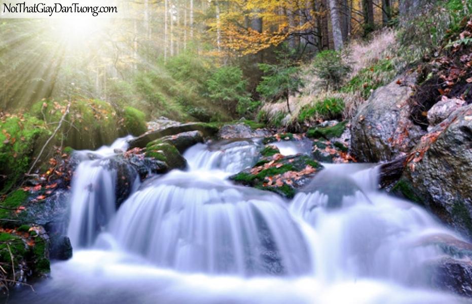 Tranh dán tường, thác nước trắng xóa trên những mỏm đá trong khu rừng dưới ánh sáng của cái nắng ban mai DA3074