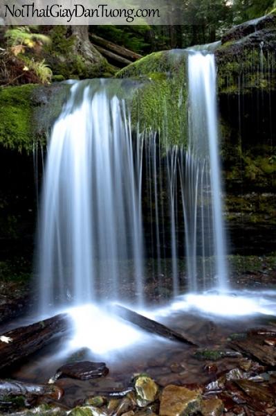 Tranh dán tường, thác nước tư nhiên chảy trên những hàng rêu xanh DA3073