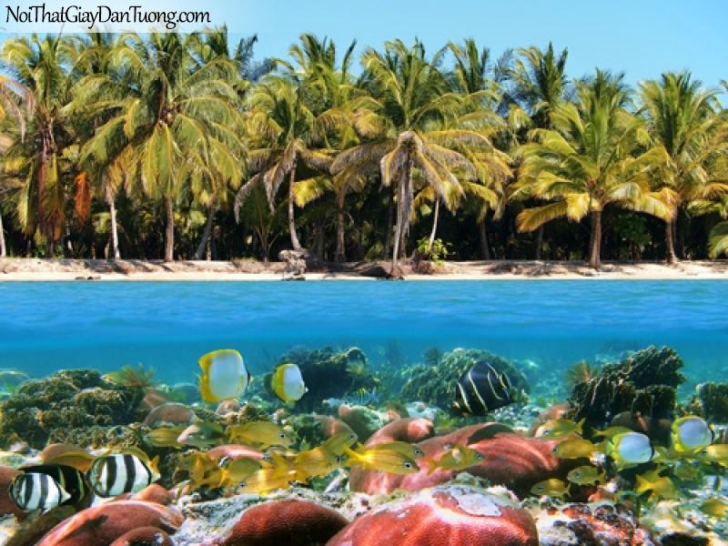 Tranh dán tường, nhìn hàng dứa xanh và những đàn cá nhỏ DA0427