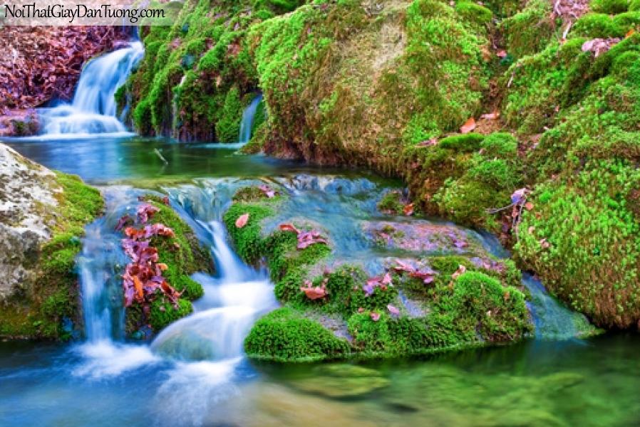 Tranh dán tường, thác nước chảy giữa những mỏm đá mọc đầy rêu xanh DA3081