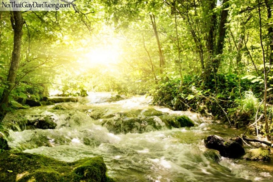 Tranh dán tường, thác nước chảy giữa rừng xanh dưới ánh nắng mùa hè DA3086