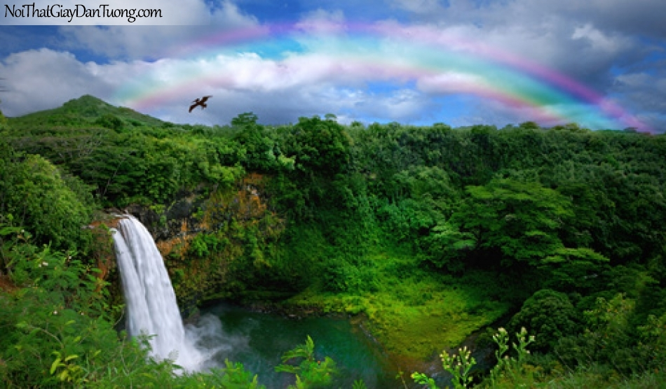 Tranh dán tường, thác nước chảy giữa rừng xanh xuống thung lũng rộng lớn với 7 sắc cầu vồng DA3090