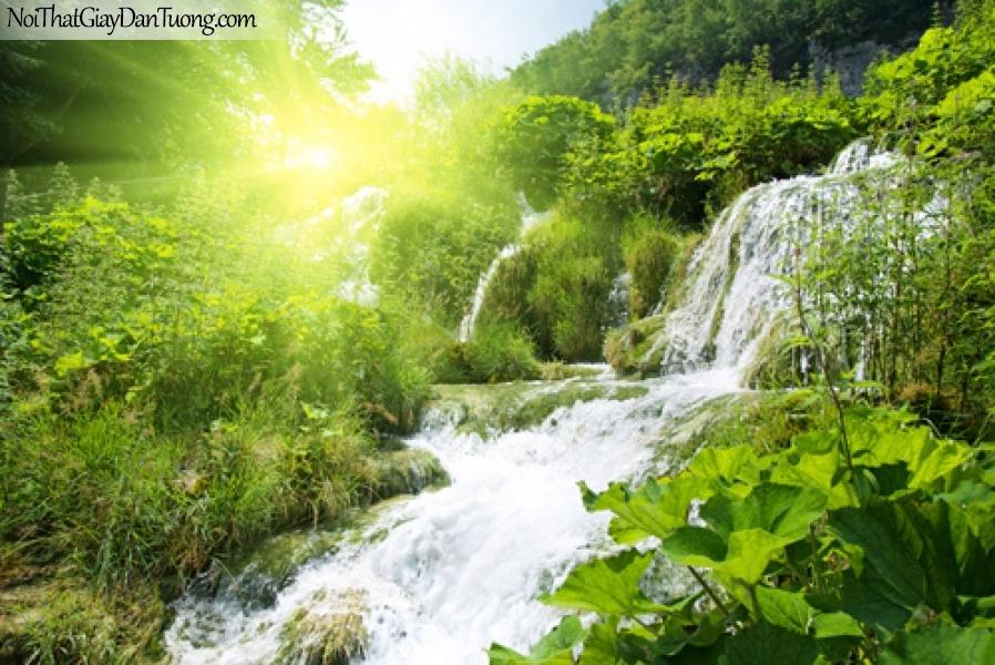 Tranh dán tường, vẻ đẹp của thác nước duới ánh nắng ban mai giữa rừng xanh DA3088