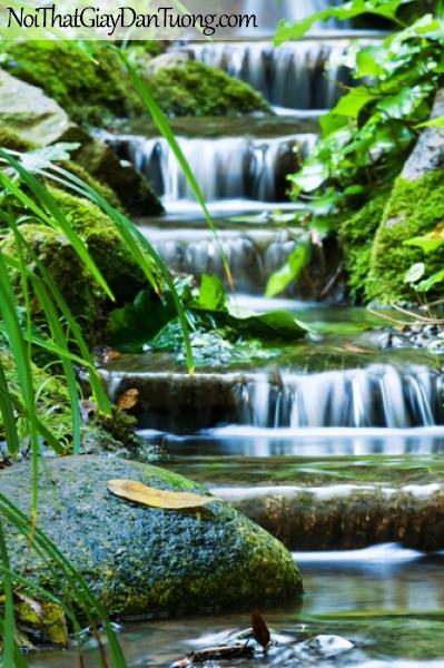 Tranh dán tường, vẻ đẹp đơn sơ nhưng khó thấy của thác nước chảy trong rừng DA3080