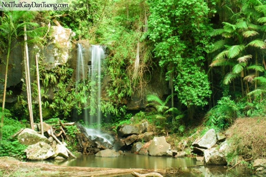 Tranh dán tường, vẻ đẹp mê hồn của thác nước chảy từ rừng xanh DA3078
