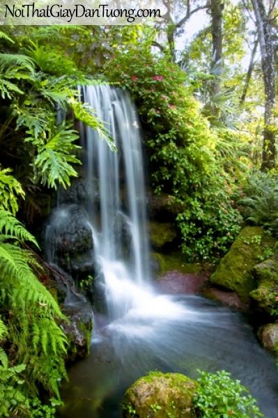 Tranh dán tường, vẻ đẹp mê hồn của thác nước giữa rừng xanh DA3087