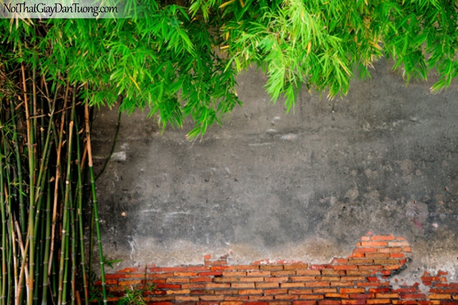 Tranh dán tường, ngắm cảnh bụi tre xanh DA0466