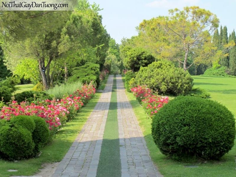 Tranh dán tường, ngắm cảnh cây cỏ hoa và con đường DA0465