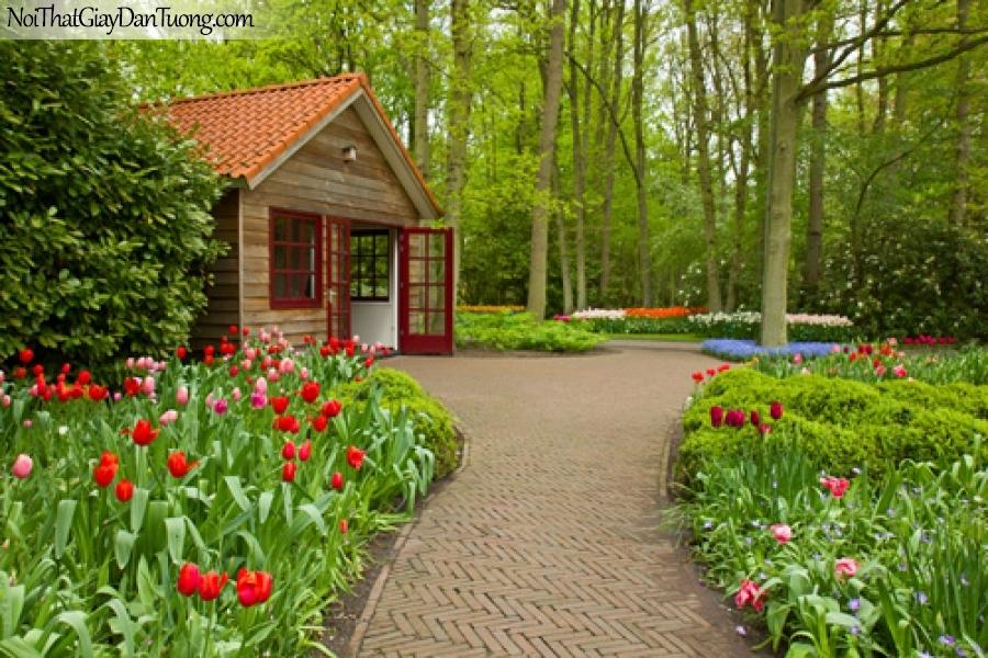 Tranh dán tường, ngôi nhà nhỏ và những bông hoa màu đỏ DA0472